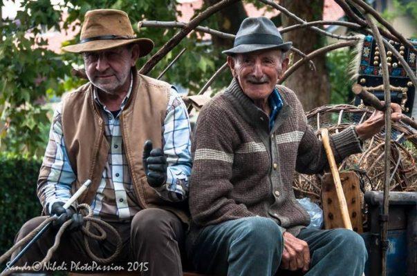 Foto di Sandro Niboli dal sito ProLoco Gorgonzola - www.prolocogorgonzola.it