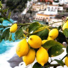 Il colore del Sole e la magia della Costiera Amalfitana.