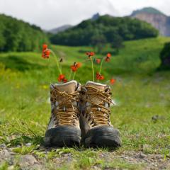 """Turismo """"soft"""": viaggiare rispettando l'ambiente e il territorio"""