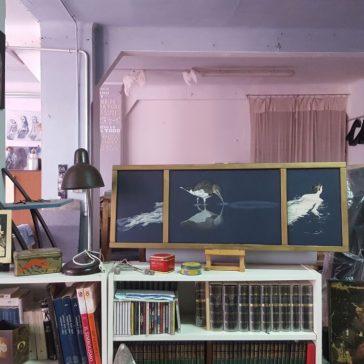 Studipraticabili a Brescia: porte aperte negli atelier degli artisti