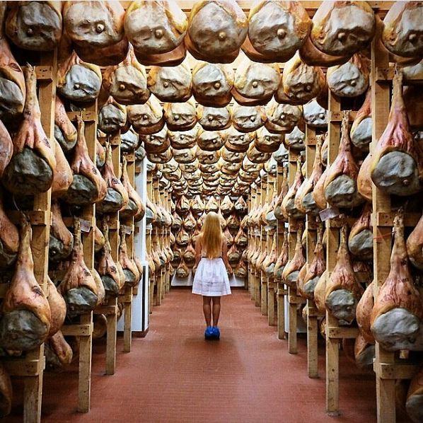 Turismo esperienziale in Friuli Venezia Giulia - Photo credit: @giariv  #ariadifvg2015