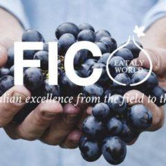 FICO – il più grande food market del mondo